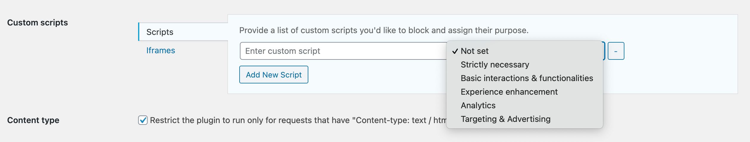 Wordpress custom and iframe scripts fields